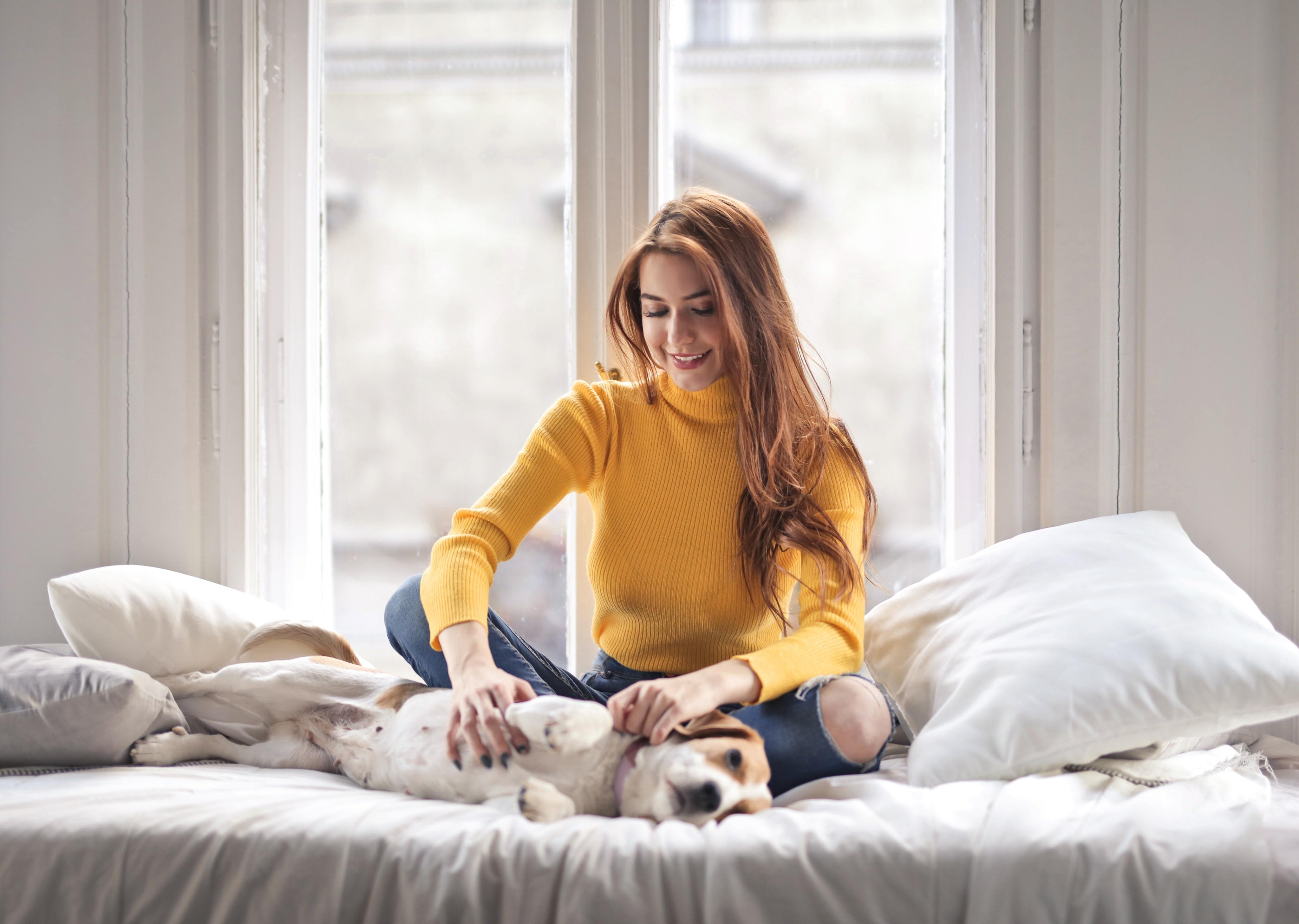 8 Tips for a Happy Apartment Home Pet - Weidner Apartment Homes Blog