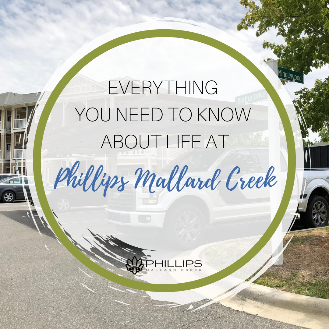 Everything You Need to Know About Life at Phillips Mallard Creek