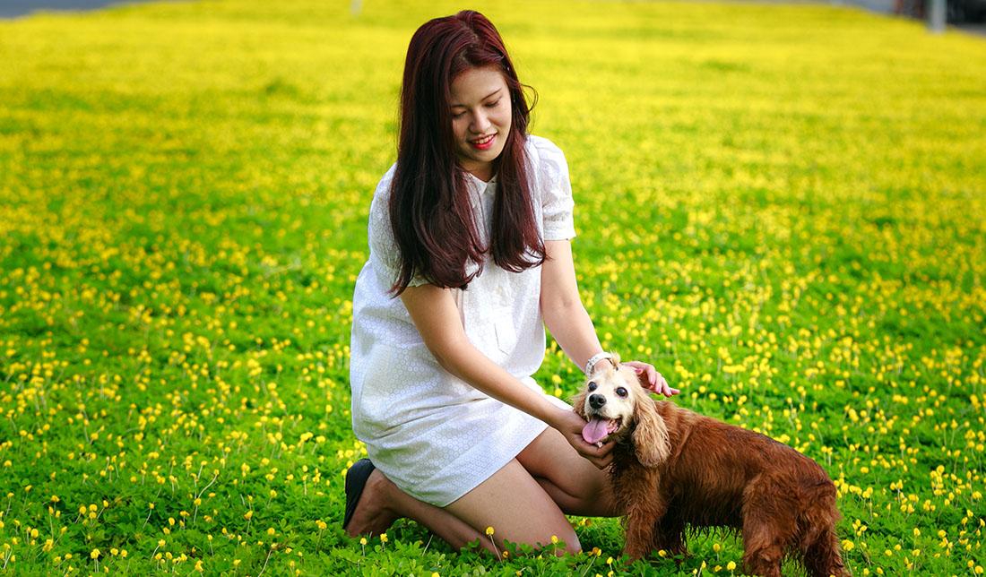 NVE Fairfax apartments woman with pet dog