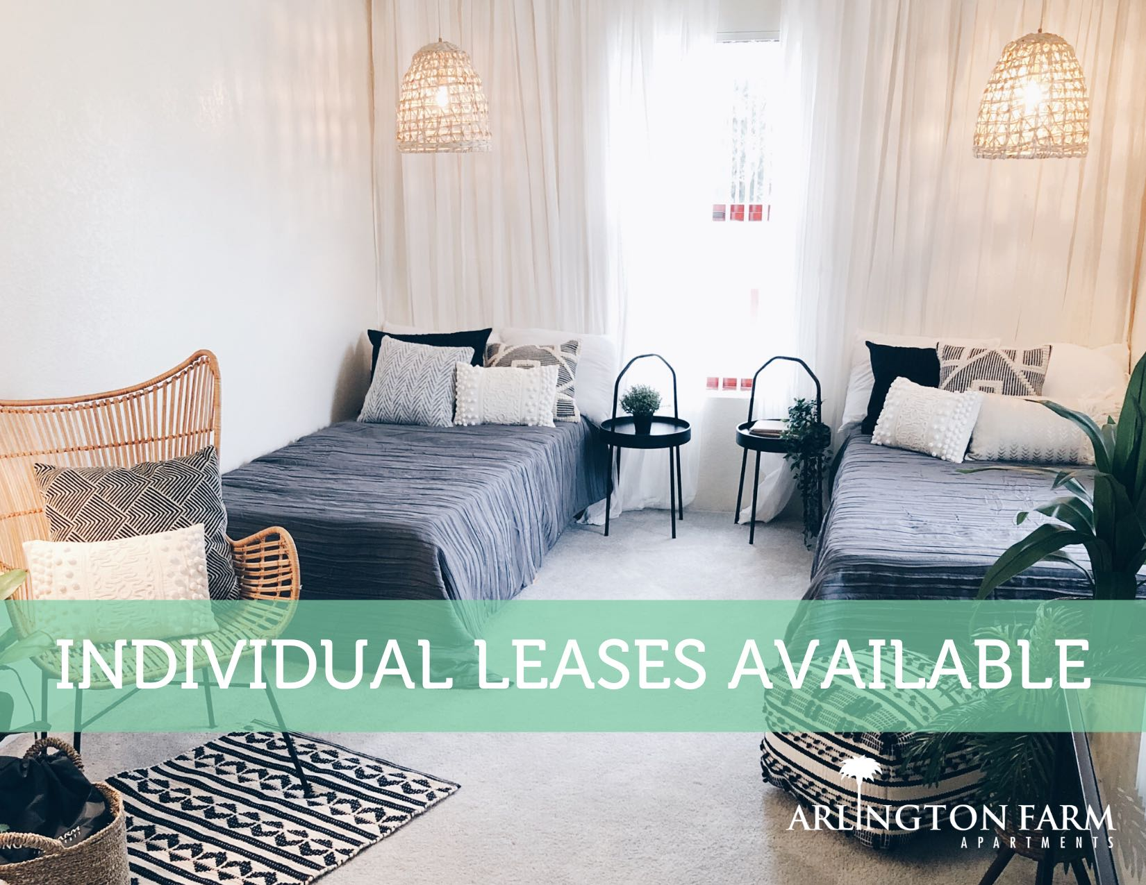 Individual Leases Available