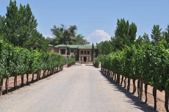 casa rondena winery new mexico