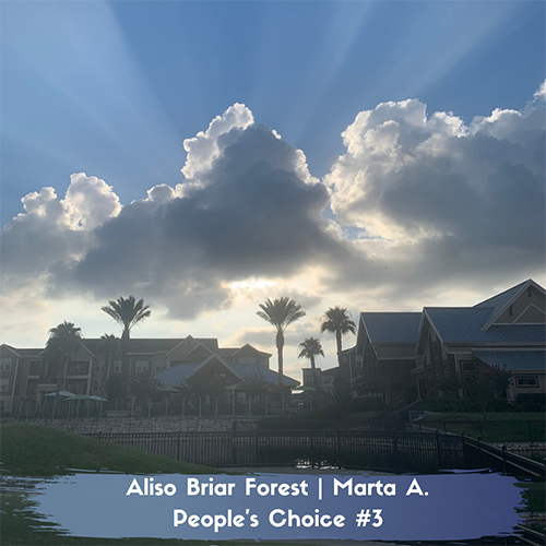 Sunset at Aliso Briar Forest Apartments