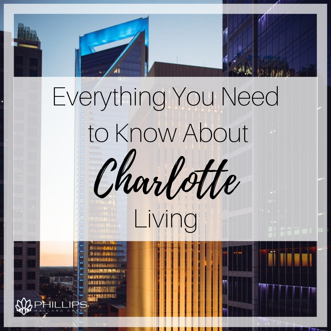 Everything You Need to Know About Charlotte Living | Phillips Mallard Creek Apartments