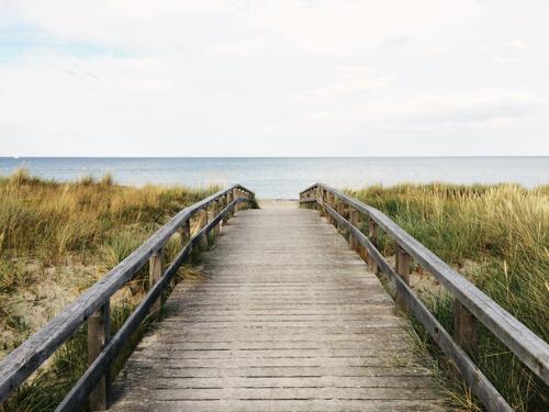 bluebell beach