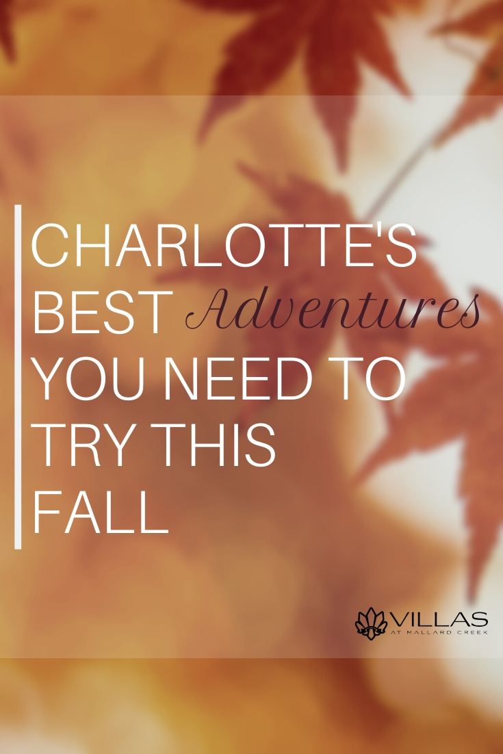 Charlotte's Best Adventures You Need to Try This Fall | Villas at Mallard Creek