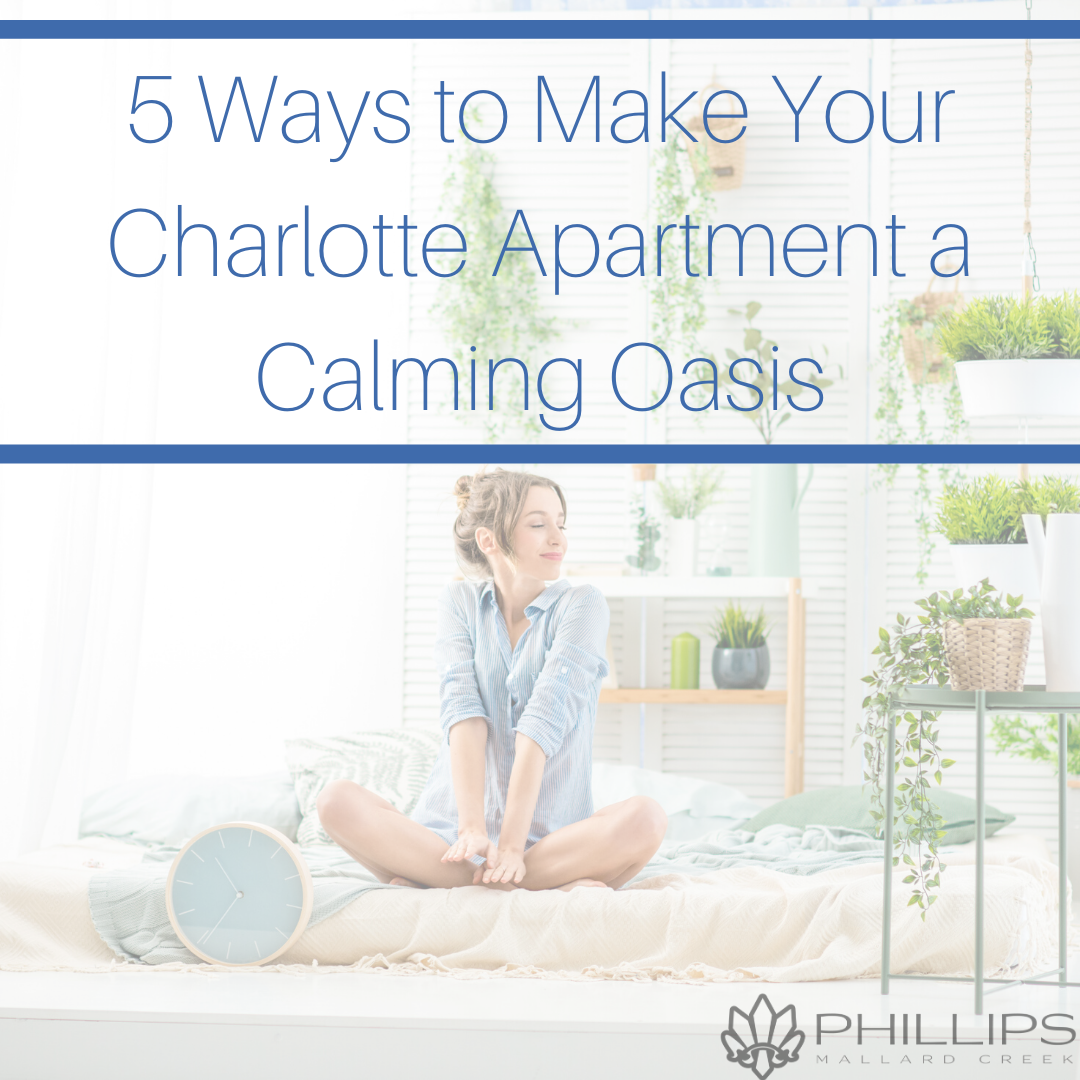 5 Ways to Make Your Charlotte Apartment a Calming Oasis Analyze | Phillips Mallard Creek