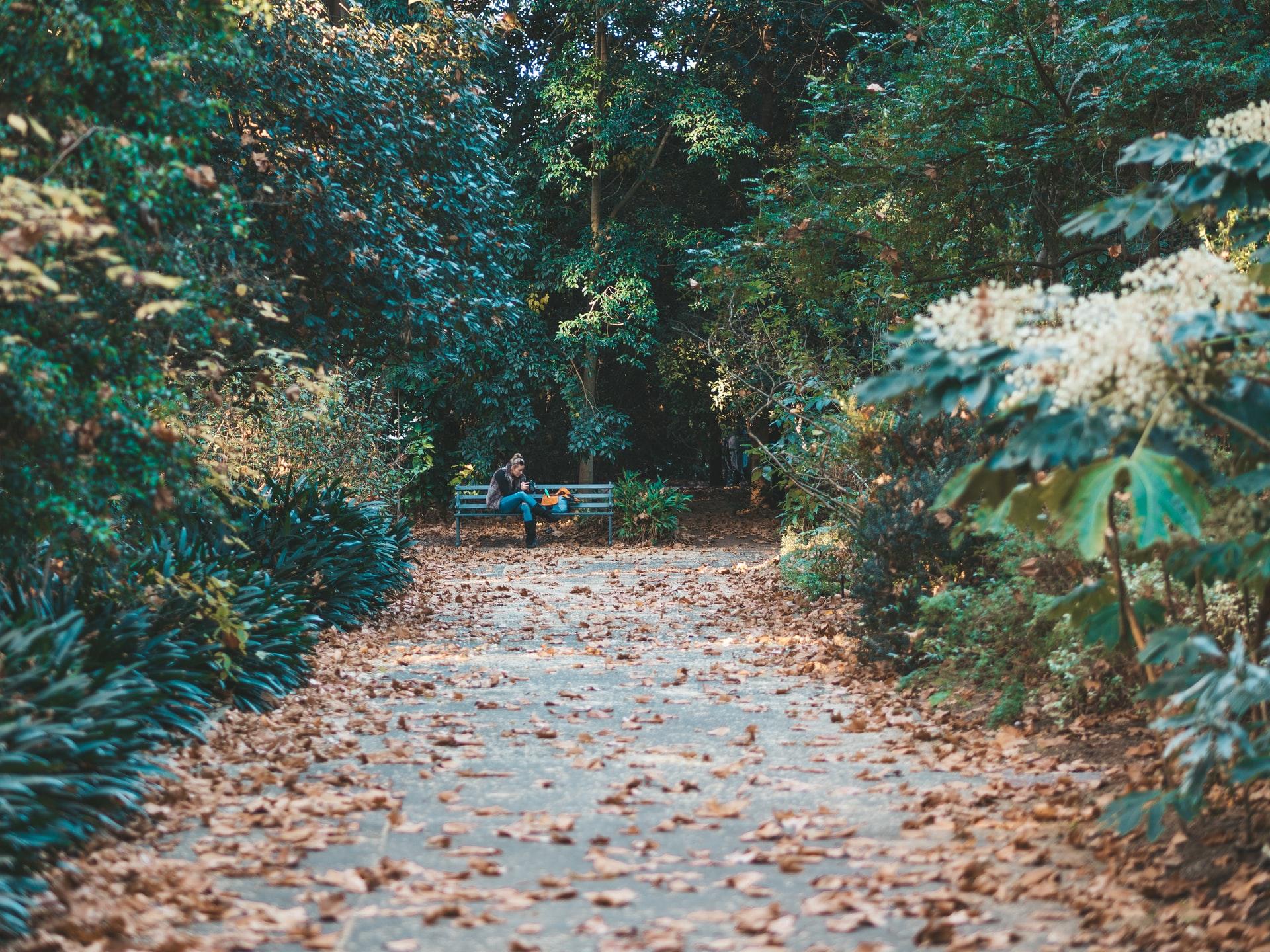 Cape Fear Botanical Garden in Fayetteville, NC