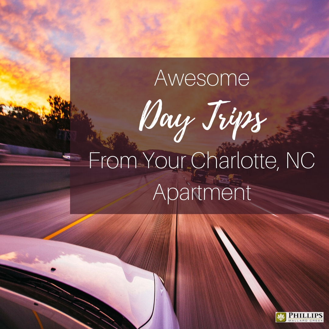 Awesome Day Trips Near Charlotte, NC | Phillips Mallard Creek Apartments