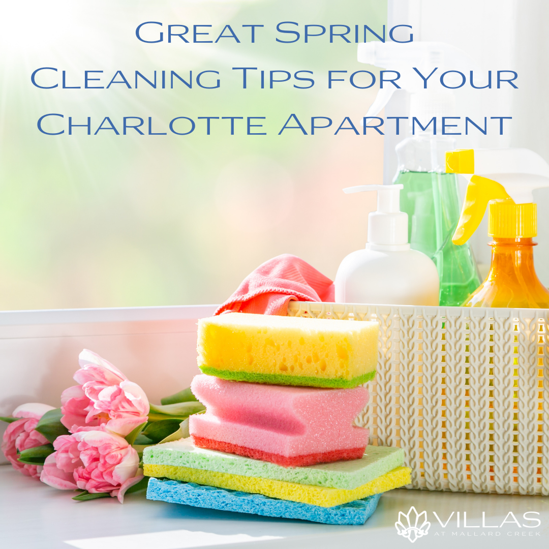 Great Spring Cleaning Tips for Your Charlotte Apartment   Villas Mallard Creek