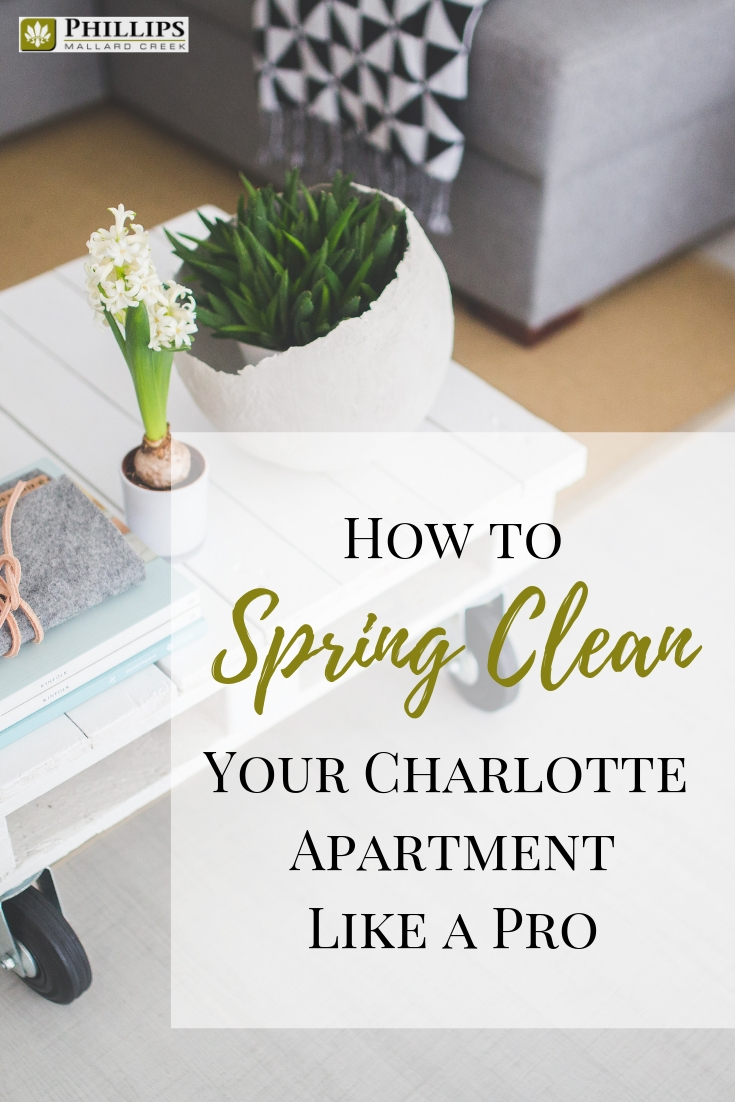 How to Spring Clean your Charlotte Apartment Like a Pro | Phillips Mallard Creek