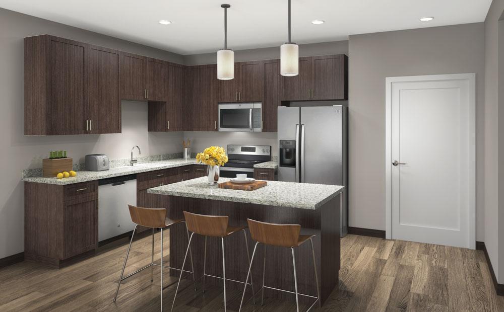 Contemporary design scheme with darker cabinetry and granite countertops