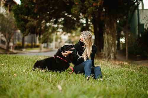 Young woman playing with her dog in a park