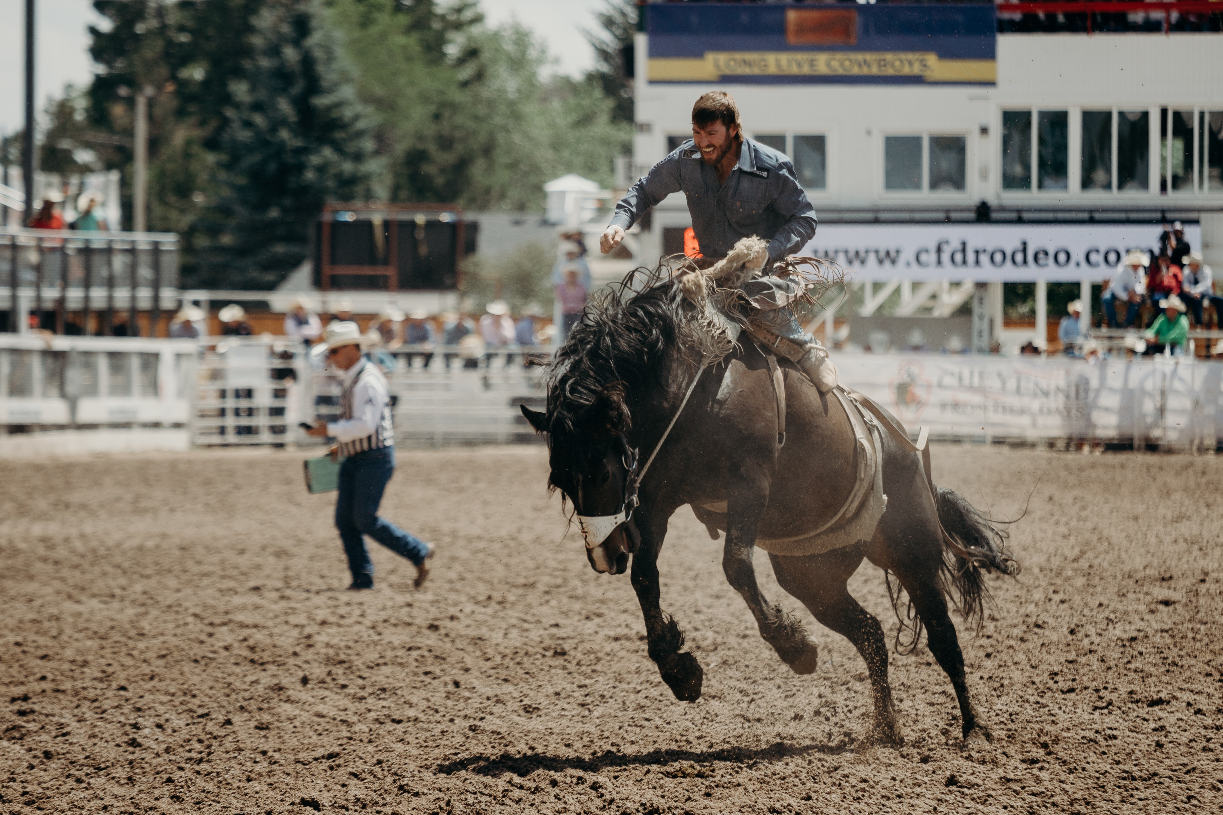 rodeo in mn
