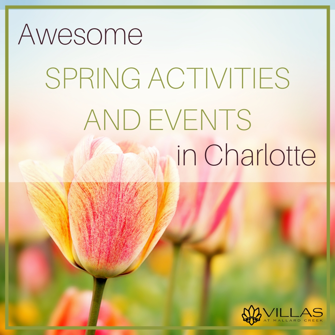 Awesome Spring Activities and Events in Charlotte   Villas at Mallard Creek Apartments