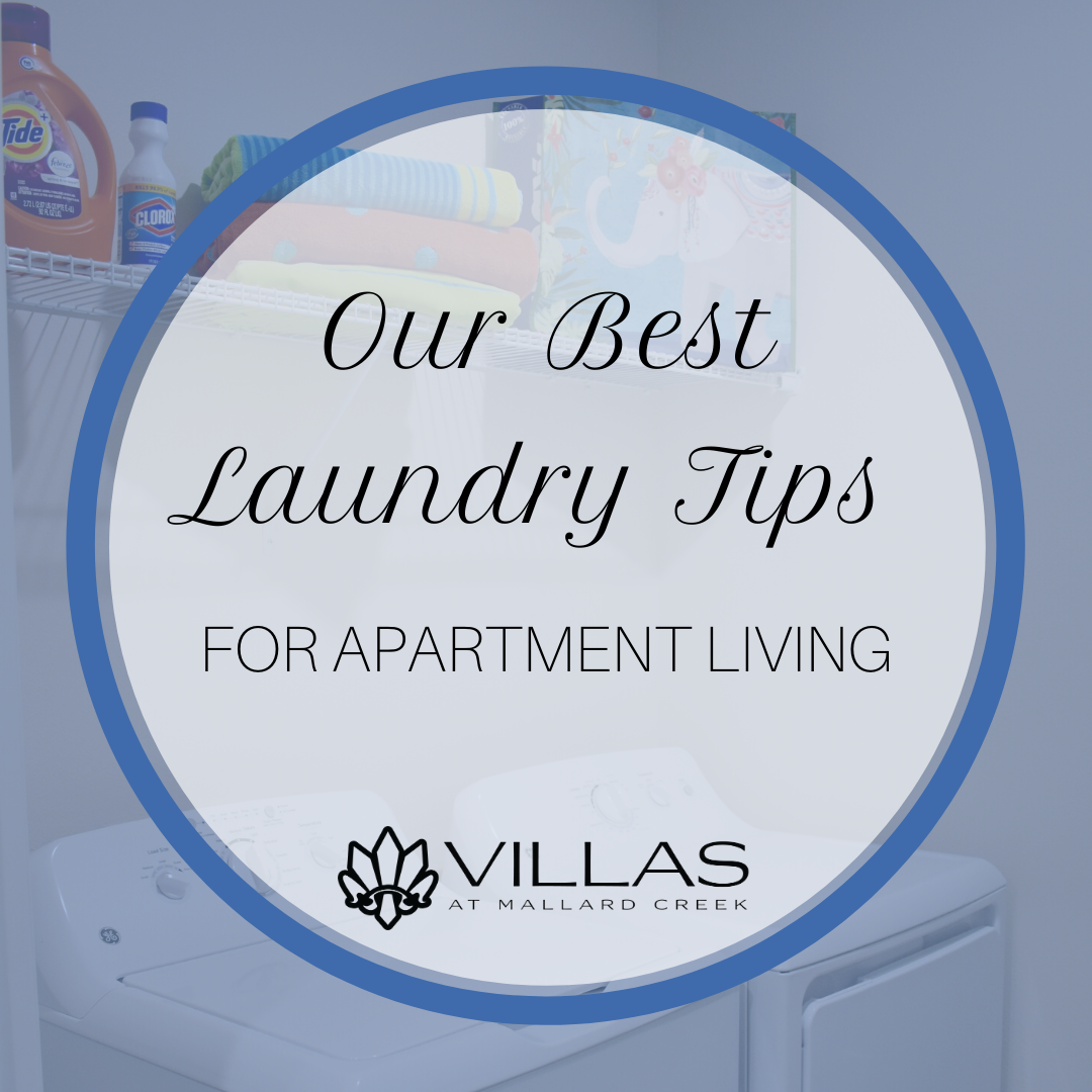 Our Best Laundry Tips for Apartment Living | Villas at Mallard Creek