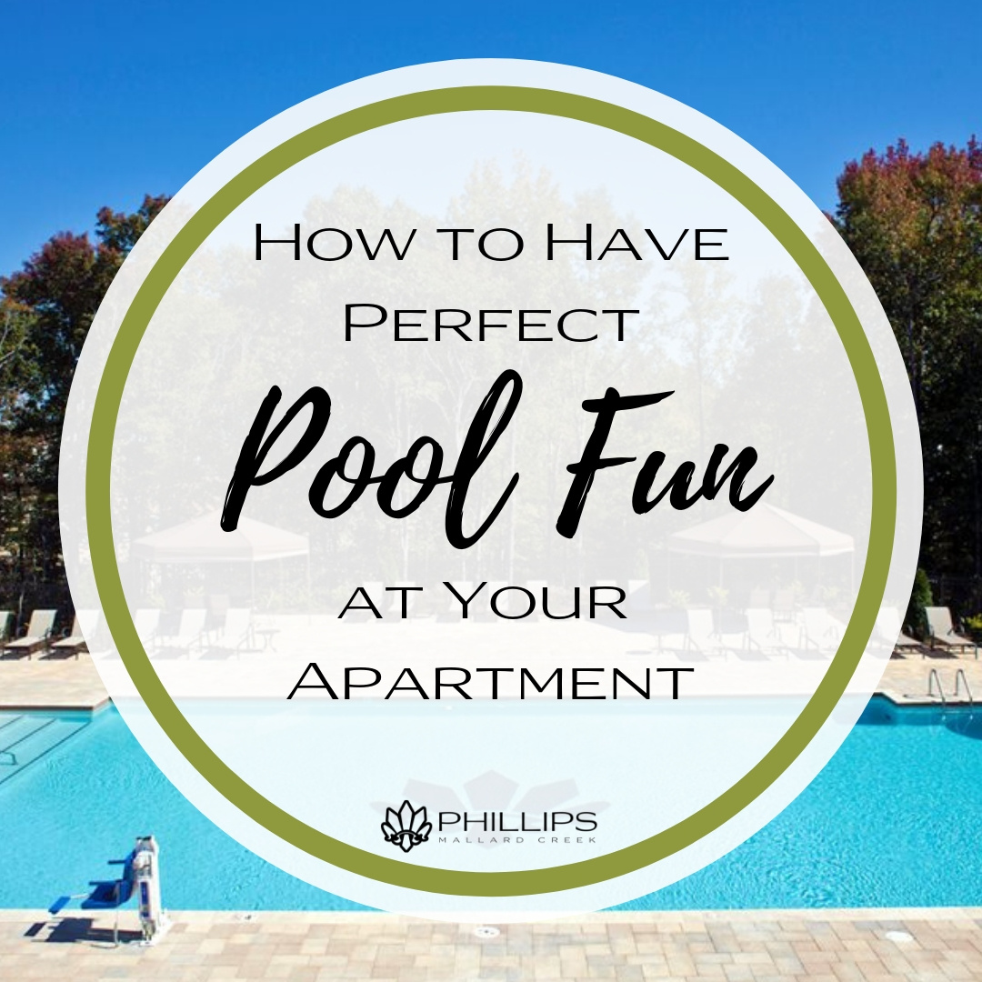How to Have Perfect Pool Fun at Your Apartment | Phillips Mallard Creek