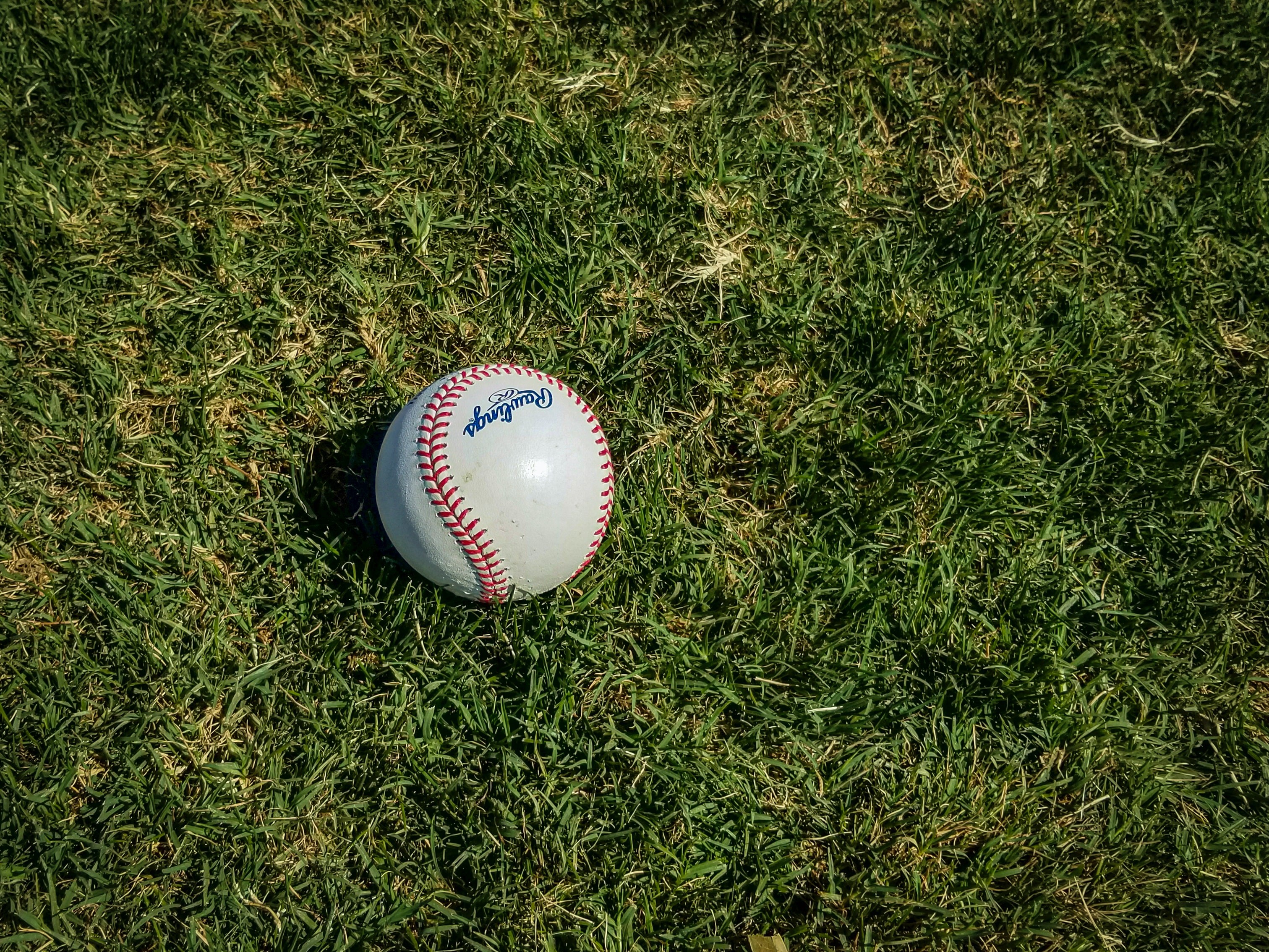 Baseball in Jackson, TN
