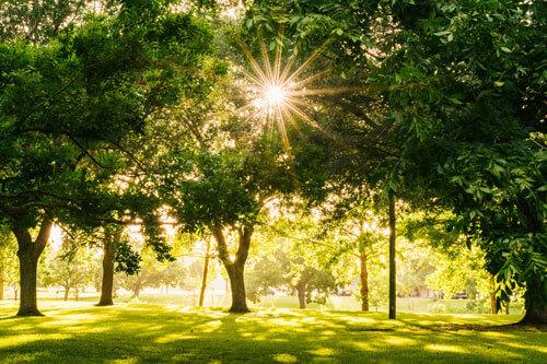 campus martius park detroit michigan