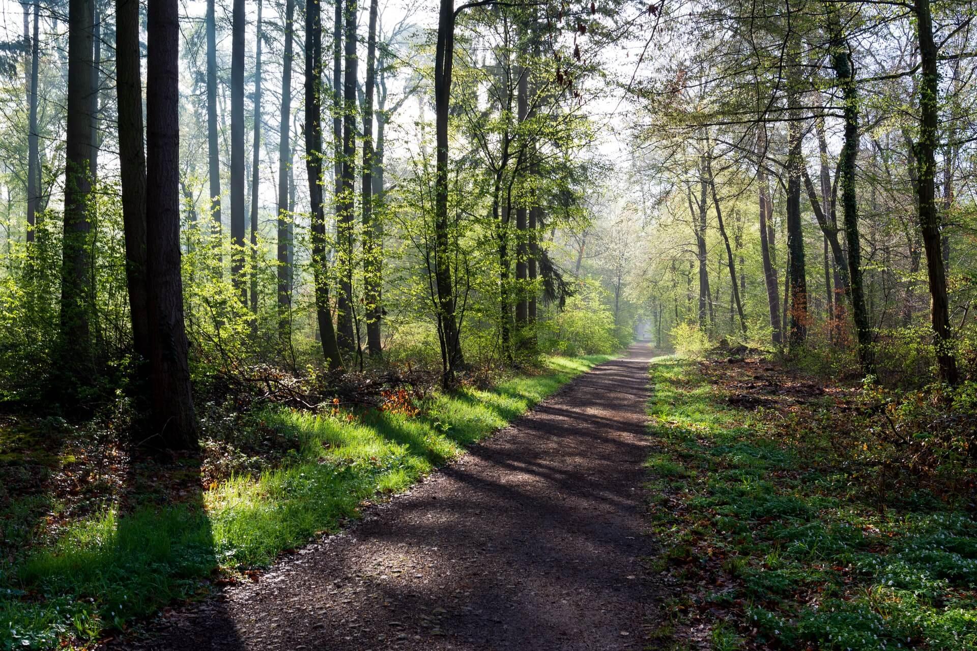 Douglas State Trail