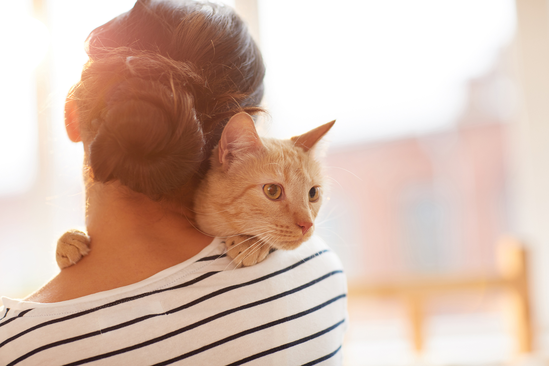 woman hugging orange tabby cat