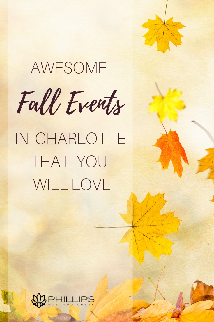 Awesome Fall Events In Charlotte That You Will Love | Phillips Mallard Creek