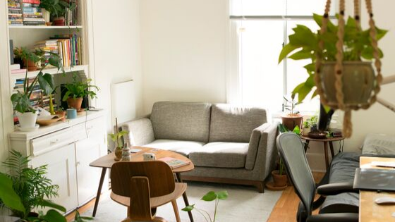 Affordable Apartment Decor Tips
