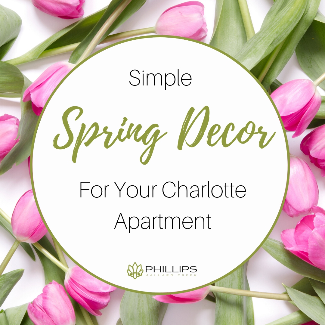 Simple Spring Decor for Your Charlotte Apartment | Phillips Mallard Creek