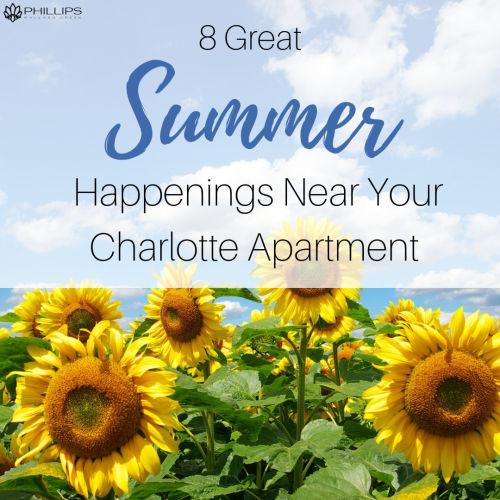 8 Great Summer Happenings Near Your Charlotte Apartment | Phillips Mallard Creek