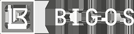 Bigos Management Logo