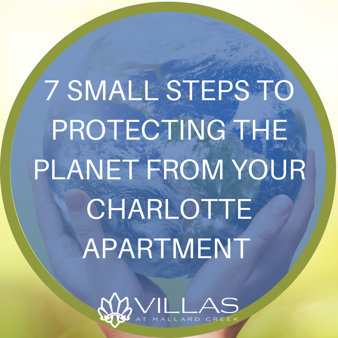 7 Small Steps to Protecting the Planet from Your Charlotte Apartment  | Villas at Mallard Creek