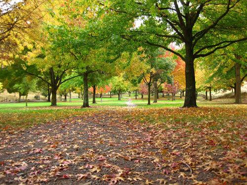 Cox Arboretum MetroPark in Dayton