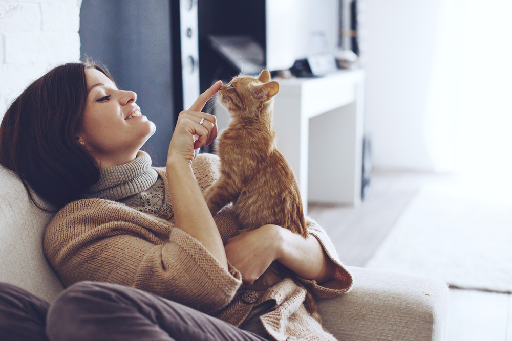 It's essential to have the right products for your pet-friendly apartment.