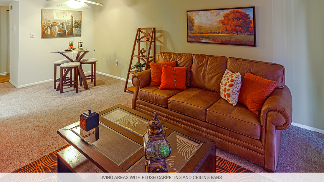 Florida apartments with plush carpeting and ceiling fans