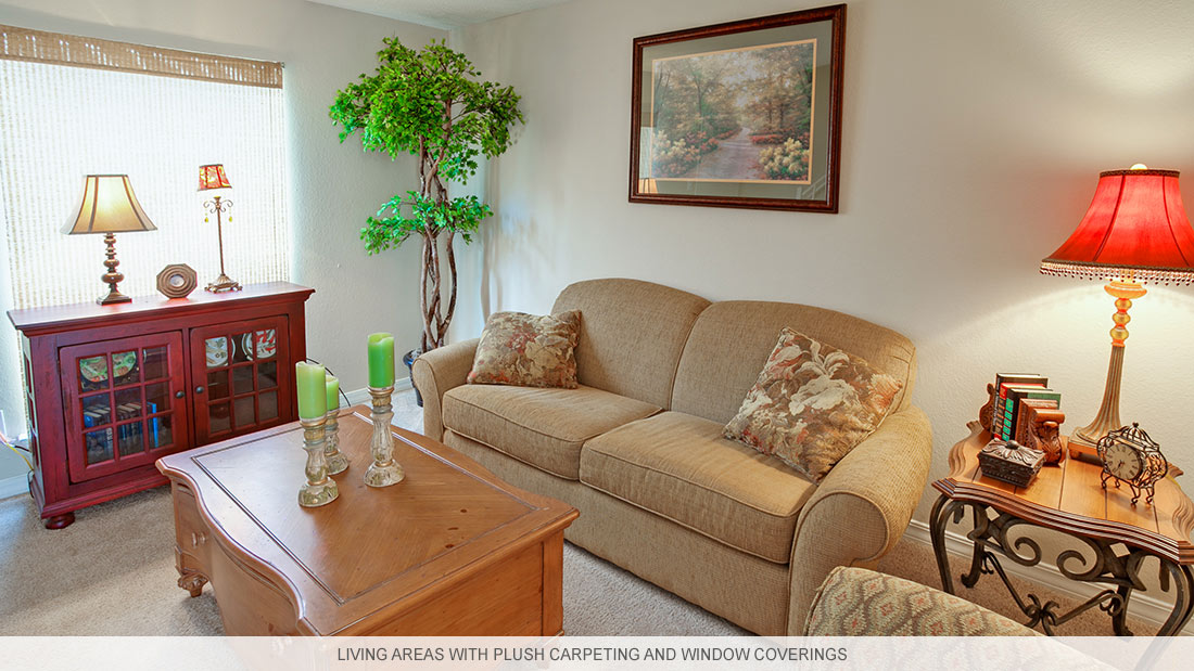Shreveport apartments with living areas featuring plush carpeting and window coverings