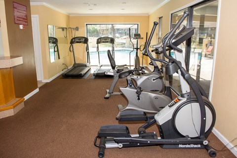 Gym with four elliptical machines at Laurel Grove Apartment Homes, Orange Park, FL, 32073