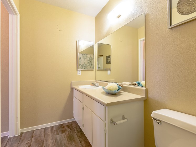 Interior Bathroom Counter at Playa Vista Apartments, Pacifica SD Management, Las Vegas, 89110