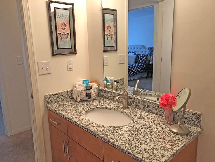 Upgraded Bathroom Fixtures at Walker Estates Apartments, Georgia, 30906