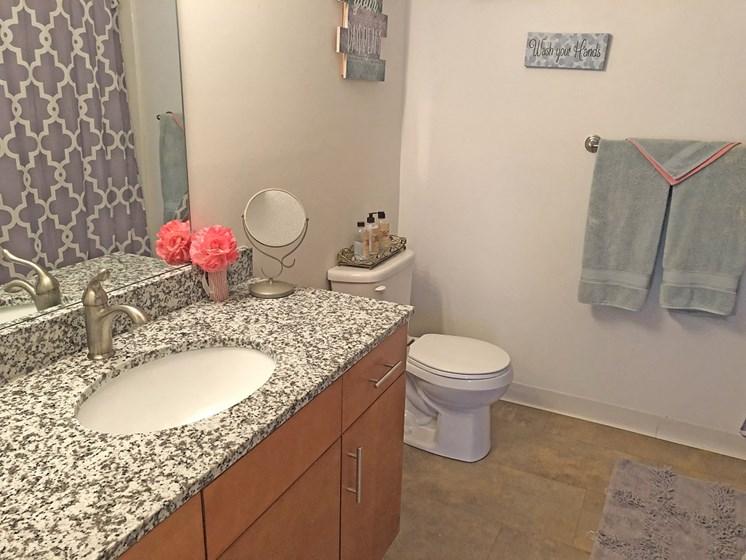 Spacious Bathrooms at Walker Estates Apartments, Augusta, GA, 30906