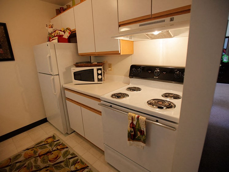 Fully Equipped Kitchen With Modern Appliances at Van Horne Estates Apartments, Texas