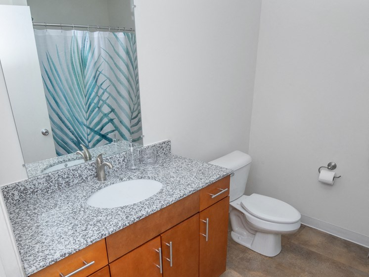 Luxurious Bathrooms at Steedman Apartments, MRD Conventional, Waterville