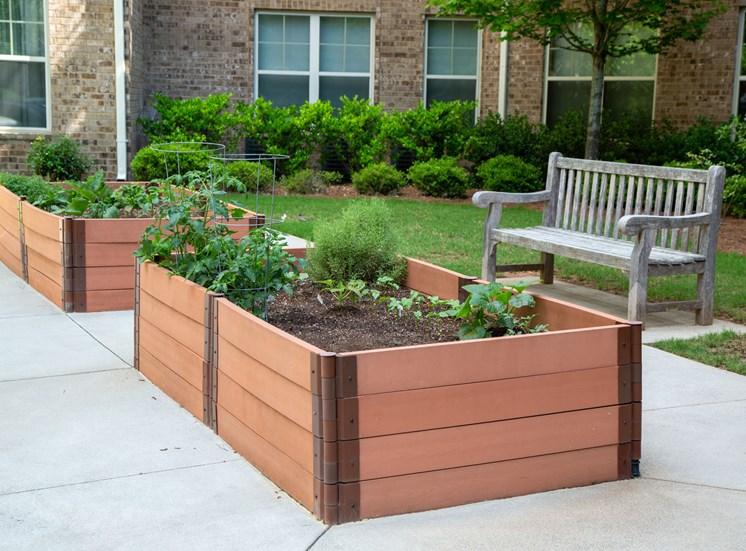 Legacy at Walton Heights Vegetable Garden