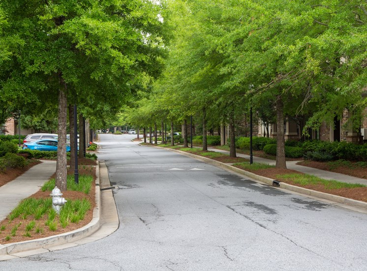 Walton Lakes, Camp Creek Parkway Tree Lined Streets