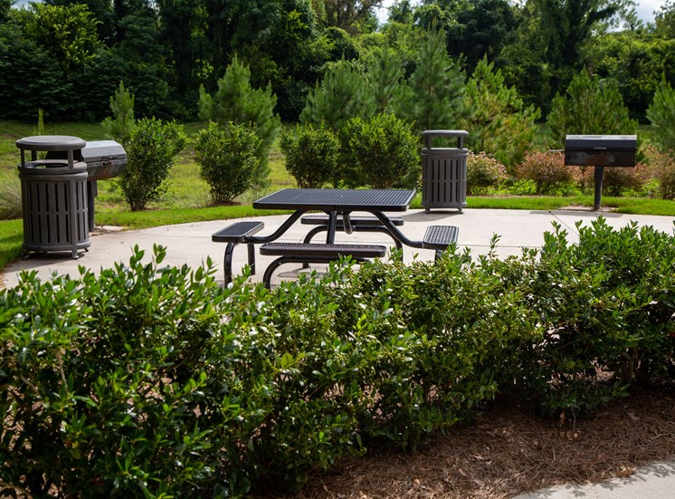 Walton Oaks Apartment Homes, Augusta GA Grill and Picnic Area