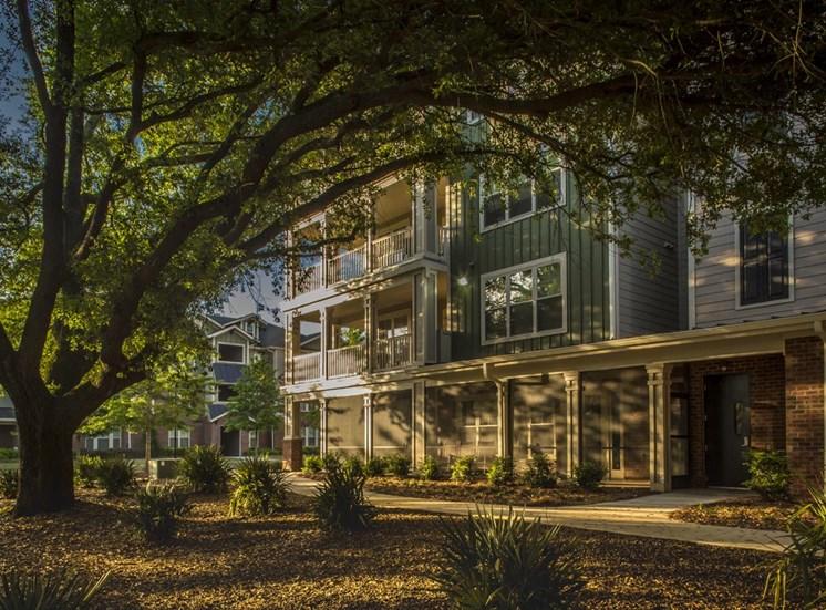 The Legacy at Walton Oaks Apartment Homes, Augusta GA Abundant Shade Areas