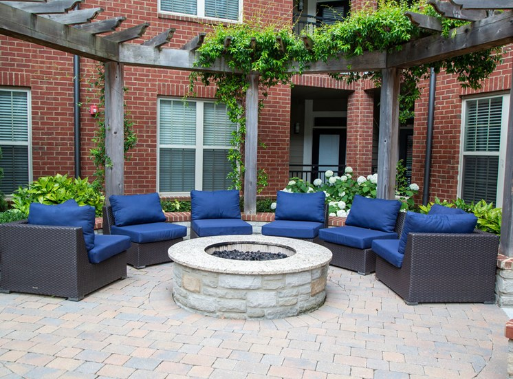 Walton Riverwood Apartment Homes  Atlanta, GA Outdoor Fire Pit