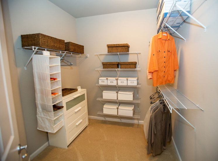 Walton Riverwood Apartment Homes  Atlanta, GA Walk-in Closets