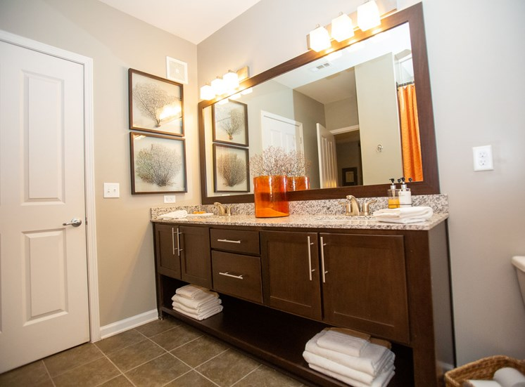 Walton Riverwood Apartment Homes  Atlanta, GA Designer Bathroom