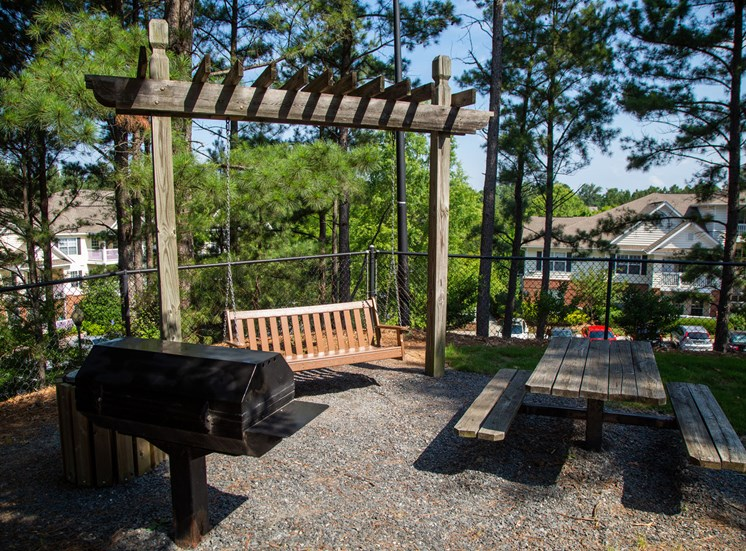 Walton Vinings Apartment Homes Picnic and Grill Area