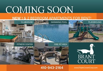 29568 Brant Court 1-2 Beds Apartment for Rent Photo Gallery 1