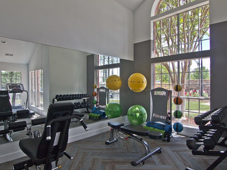 Fitness Center Weights and Balance Balls